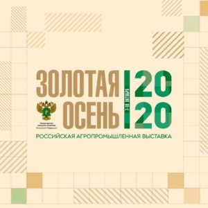 Тему повышения предпринимательской активности обсудили на «Золотой осени 2020»