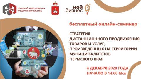 Семинар «Стратегия дистанционного продвижения товаров и услуг, произведённых на территории муниципалитетов Пермского края»
