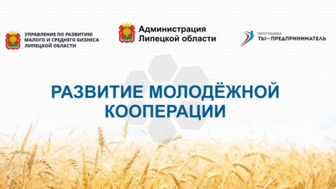 5 поток в рамках регионального проекта «Развитие молодёжной кооперации».